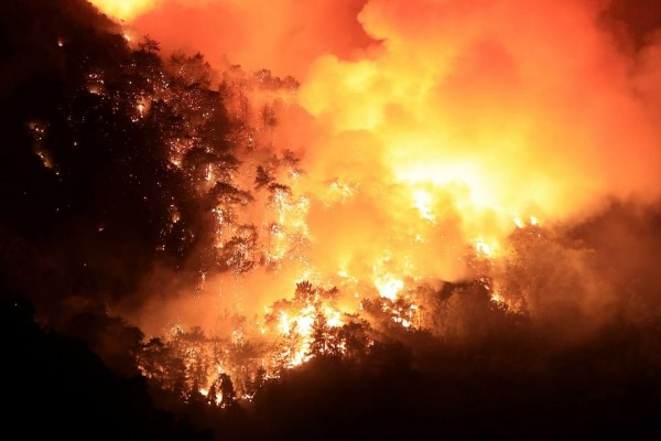 kebakaran-hebat-di-selatan-turki-tewaskan-3-korban-jiwa-image